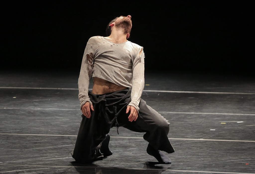 dance-journey-program-kibbutz-contemporary-dance-company-012